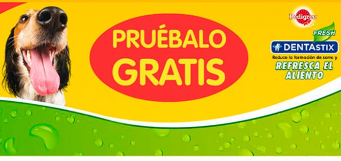 prueba gratis pedigree dentastix fresh