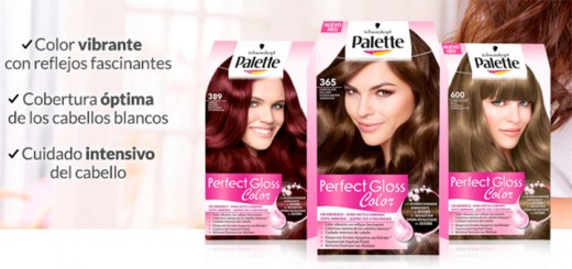Consigue Palette Perfect Gloss Color