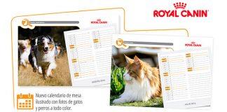 Consigue un calendario 2016 con Royal Canin