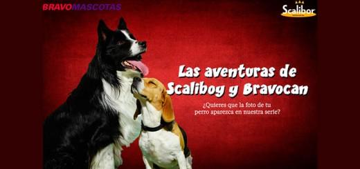 Consigue que tu perro salga en la serie de Scalibor