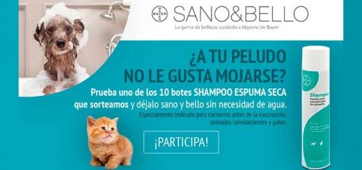 Gana un champú Espuma Seca de Sano&Bello