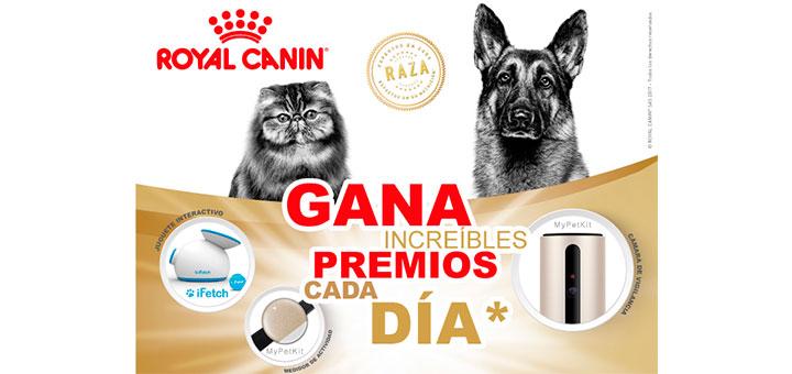 Gana increíbles regalos cada día con Royal Canin