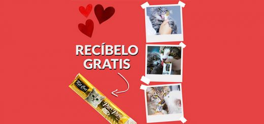 Prueba gratis snack top ventas de Kit Cat