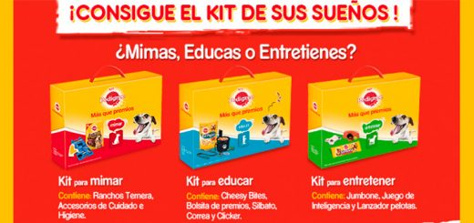 Consigue un kit Pedigree